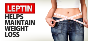 Leptin-And-Weight-Loss