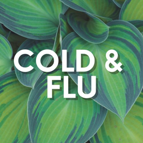 Allergy/Cold/Flu