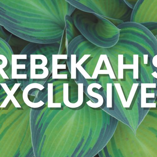 Rebekah's Exclusives